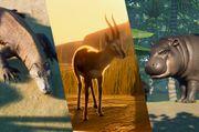 3 karakteristieke dieren