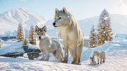 Arctic Pack 22