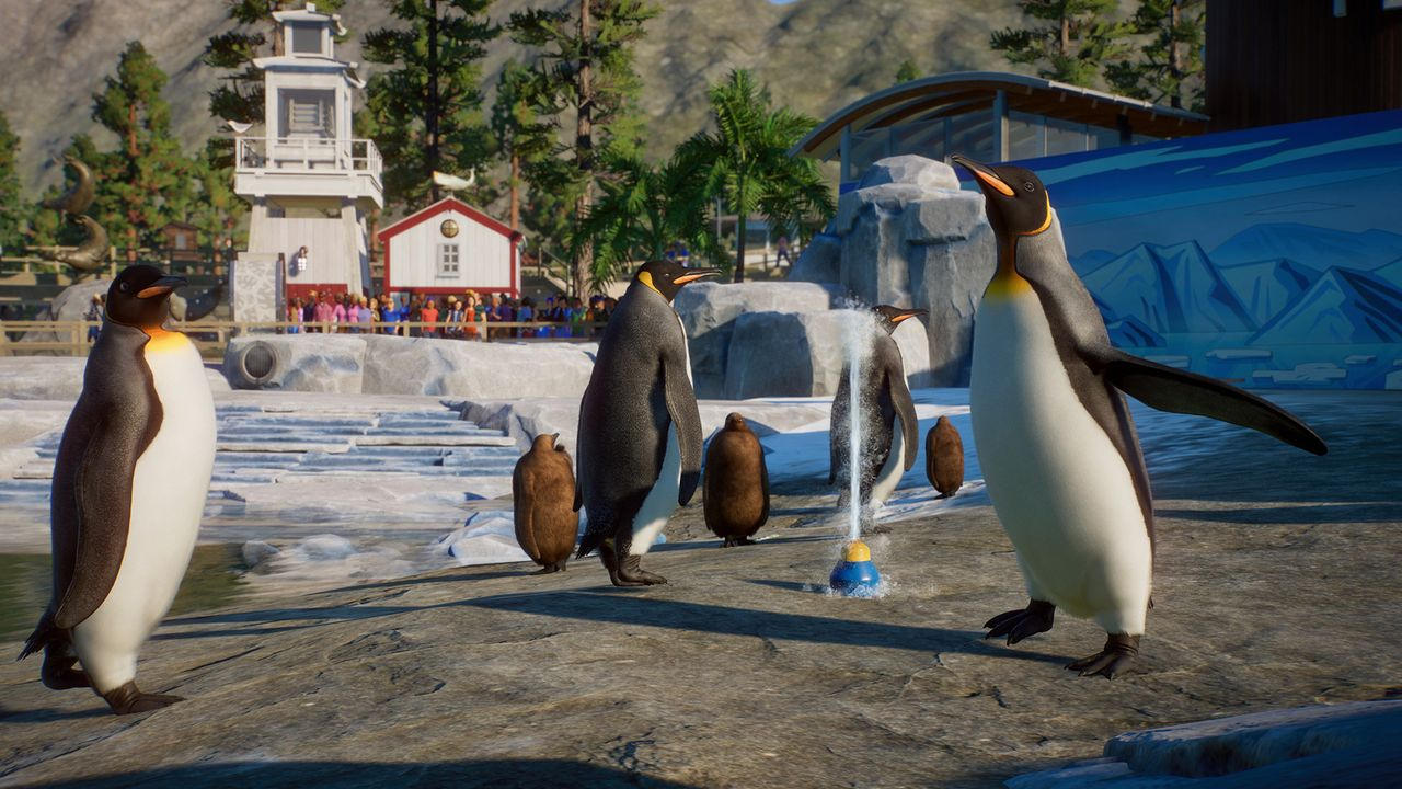 Planet Zoo Aquatic Pack - Penguin 03