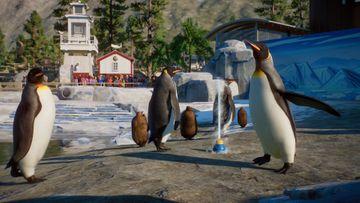 Planet Zoo Aquatic Pack - Penguin 03