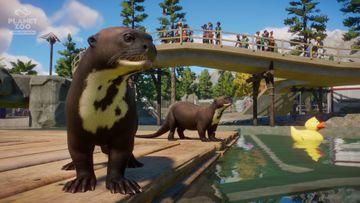 Planet Zoo: Aquatic Pack - Otter 02