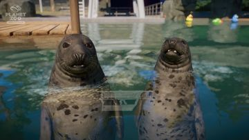 Planet Zoo: Aquatic Pack - Seal 04