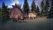 Species Field Guide - Stegosaurus