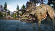 Species Field Guide - Triceratops