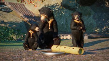 Southeast Asia Animal Pack - Sun Bear 02