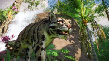 Southeast Asia Animal Pack - Cloud Leopard 02