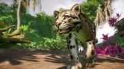 Southeast Asia Animal Pack - Cloud Leopard 03