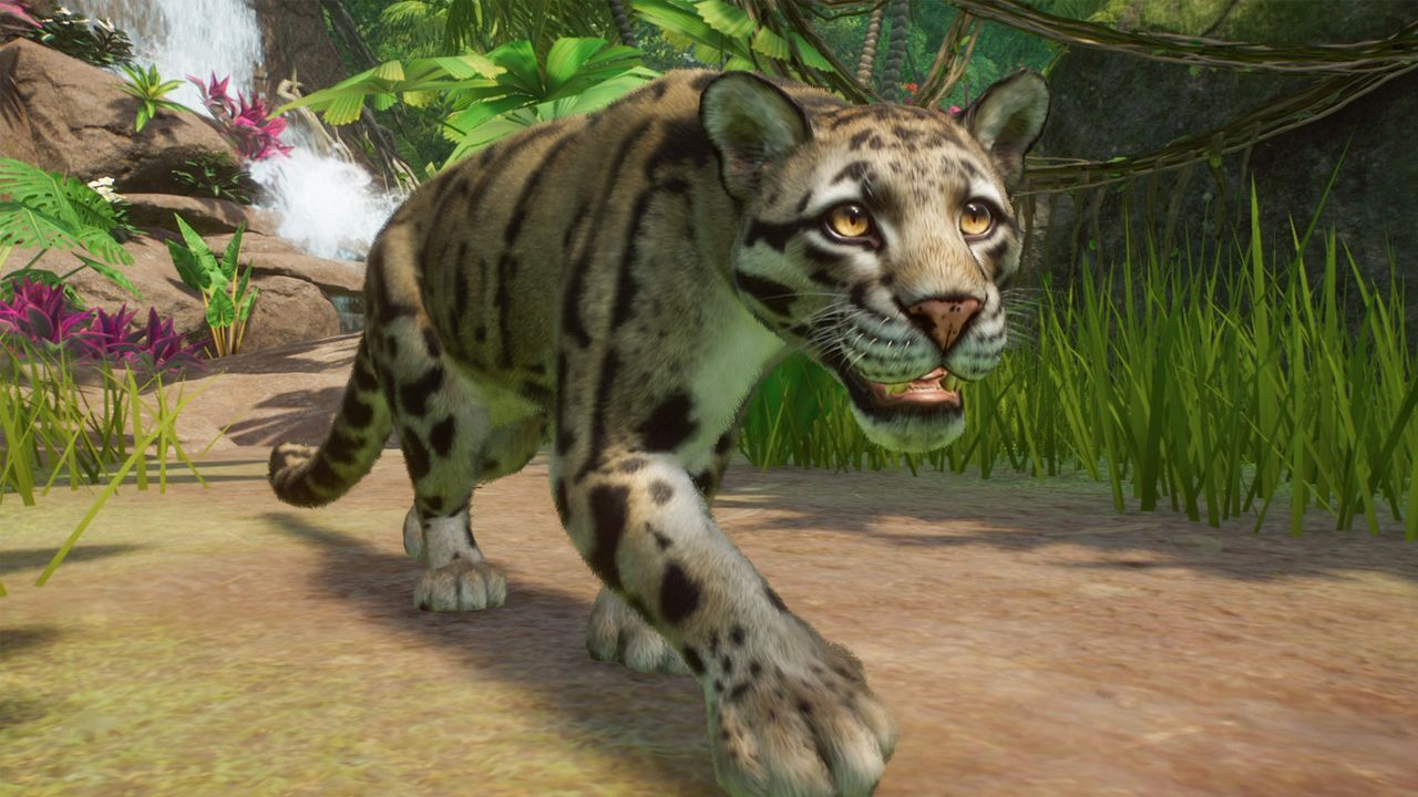Southeast Asia Animal Pack launch